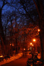 Park Path By Night