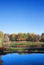 Park with ponds in warsaw the moczydlo city of poland Royalty Free Stock Photography