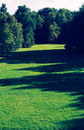 Park public in the evening green grass and trees light and shadow vintage photo effect Stock Image