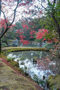 The park with red maples tree in japan view of Royalty Free Stock Photo