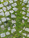 Park road granite stone pavement background with small portions of green grass vegetation Stock Images