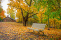 Park scenery in october Royalty Free Stock Photo