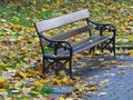 Park Seat in Autumn Stock Images
