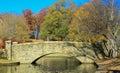 Park with Stone Bridge 1 Royalty Free Stock Photo