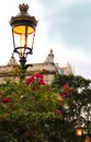 Park street light in havana cuba classic ornamental a plaza of with tropical flowers Stock Images