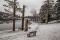 Park under snow by lake in winter time Royalty Free Stock Photo