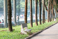 In the park urban trees facilities services and people public places guangzhou city china Stock Images