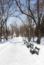 Park in winter alley carol bucharest Royalty Free Stock Photo