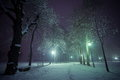 Park in winter time at night Stock Image