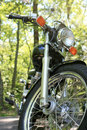 Parked motorcycle in trees Royalty Free Stock Image