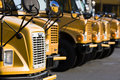 Parked School Buses Royalty Free Stock Photo