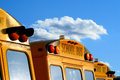 Parked school busses Royalty Free Stock Photo