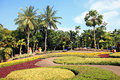 Parks in thailand for various types of tree and flowers Stock Image