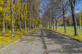 Parkway in october alley next to the main building of moscow state university Royalty Free Stock Photo