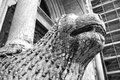Parma Cathedral, column-bearing lion detail. Black and white image Royalty Free Stock Photo