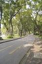 Parque público de lumpini Foto de archivo libre de regalías