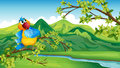 A parrot across the river illustration of Royalty Free Stock Images