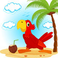 Parrot on beach vector illustration Royalty Free Stock Photos