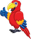 Parrot bird with thumb up Stock Image