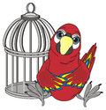Parrot and cage Royalty Free Stock Photo