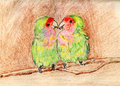 Parrot couple the on paper Stock Photography