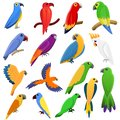 Parrot icons set, cartoon style