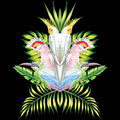 Parrot mirror tropical leaves black background