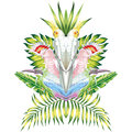 Parrot mirror tropical leaves white background