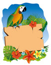 Parrot and signboard colorful over flowers Stock Photo