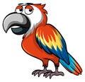 Parrot with sleepy eyes