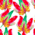 Parrot tulip flower watercolor seamless pattern. Bright tropical flowers isolated on white background. Royalty Free Stock Photo