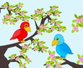 Parrots a happy parrot and a grumpy parrot sitting in a flowering tree Royalty Free Stock Photos