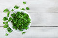 Parsley in bowl Royalty Free Stock Photo
