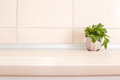 Parsley on countertop Royalty Free Stock Photo