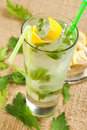 Parsley drink in tall glass Stock Photography
