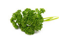 Parsley isolated on white background Stock Image