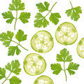 Parsley and slice of cucumber background with Stock Photo