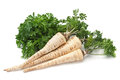 Parsley vegetable root on white Royalty Free Stock Photo