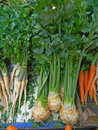 Parsnip celery and carrots a disposable items in the market Stock Image