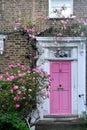 The pink door Royalty Free Stock Photo