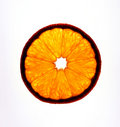 Part orange Image libre de droits