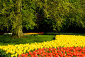 Part of the park keukenhof Royalty Free Stock Photo