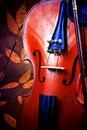 Particolari del violino Immagine Stock Libera da Diritti
