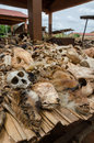 Parts Of Dead Animals Offered ...