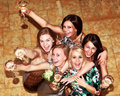 Party bridesmaids before the wedding Stock Image
