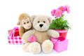 Party with cuddly animals a monkey and teddy bear red and pink wrapped presents and daisy flowers in a red bucket isolated on Stock Images