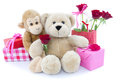 Party with cuddly animals a monkey and teddy bear red and pink wrapped presents and red roses in a red paper bag isolated on white Stock Photography