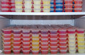 Party Jello shots Royalty Free Stock Photos