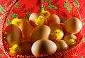Pascua: pequeños pollos amarillos y huevos simples Foto de archivo libre de regalías