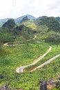 The pass in the North of Vietnam Royalty Free Stock Photo